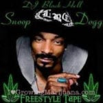 Snoop dogg detained
