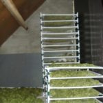 Cannabis drying process