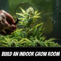 how-to-build-an-indoor-grow-room