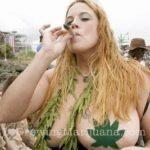 Huge tits marijuana
