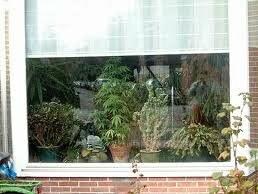 Cannabis moving grow room window