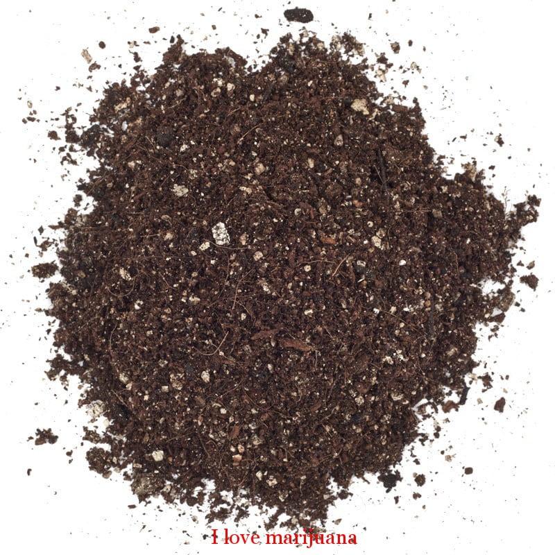 soilless-planting-mix-marijuana
