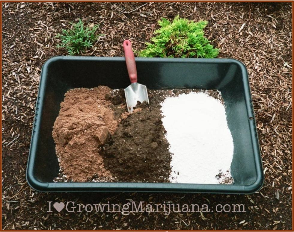 Regular vs specialty potting soil for marijuana plants for Topsoil vs potting soil
