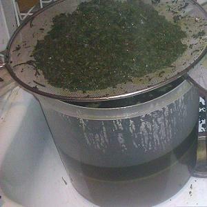 Cannabis leaves for mulch