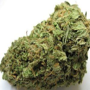 Amnesia Haze marijuana bud