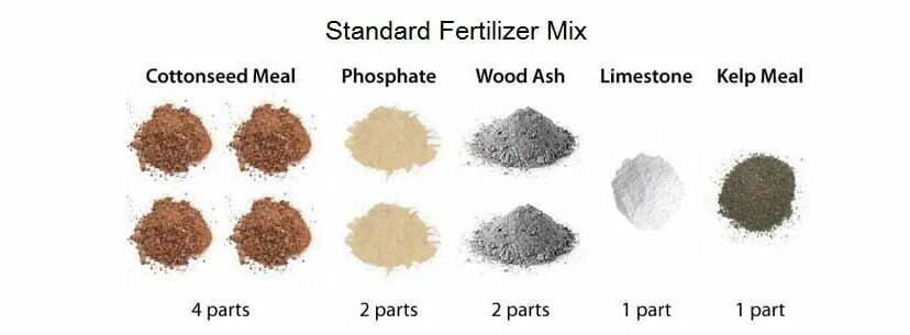 Homemade marijuana fertilizers