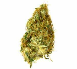 One gram of marijuana