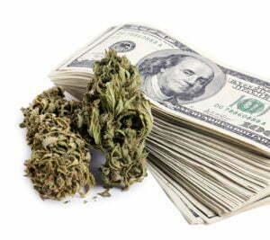 Legal vs illegal cannabis