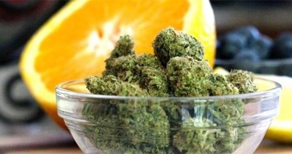 Maximize Taste and Smell of your Marijuana - I Love Growing Marijuana