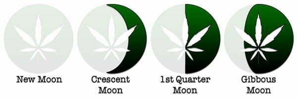 Using The Moon to Grow Marijuana - I Love Growing Marijuana