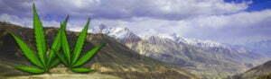 afghan hindu kush