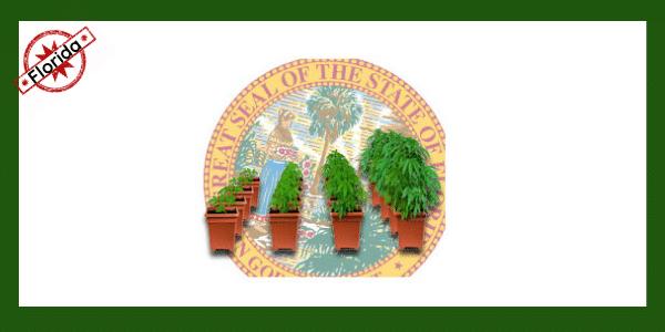 growing-marijuana-in-florida