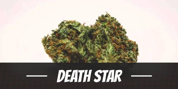 Death Star Strain