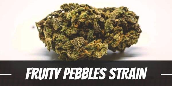 Fruity Pebbles Strain