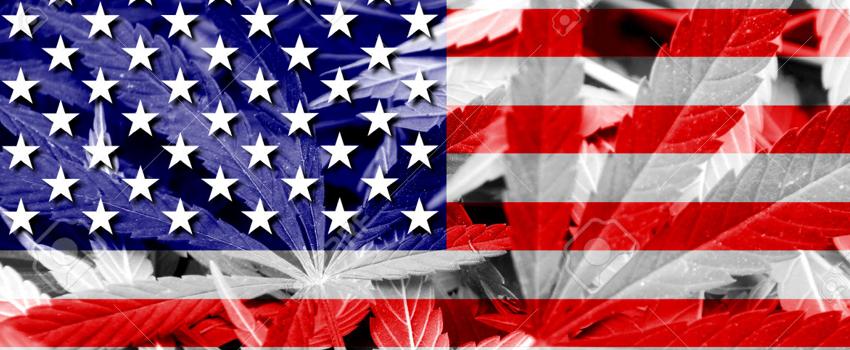 Marijuana State Laws