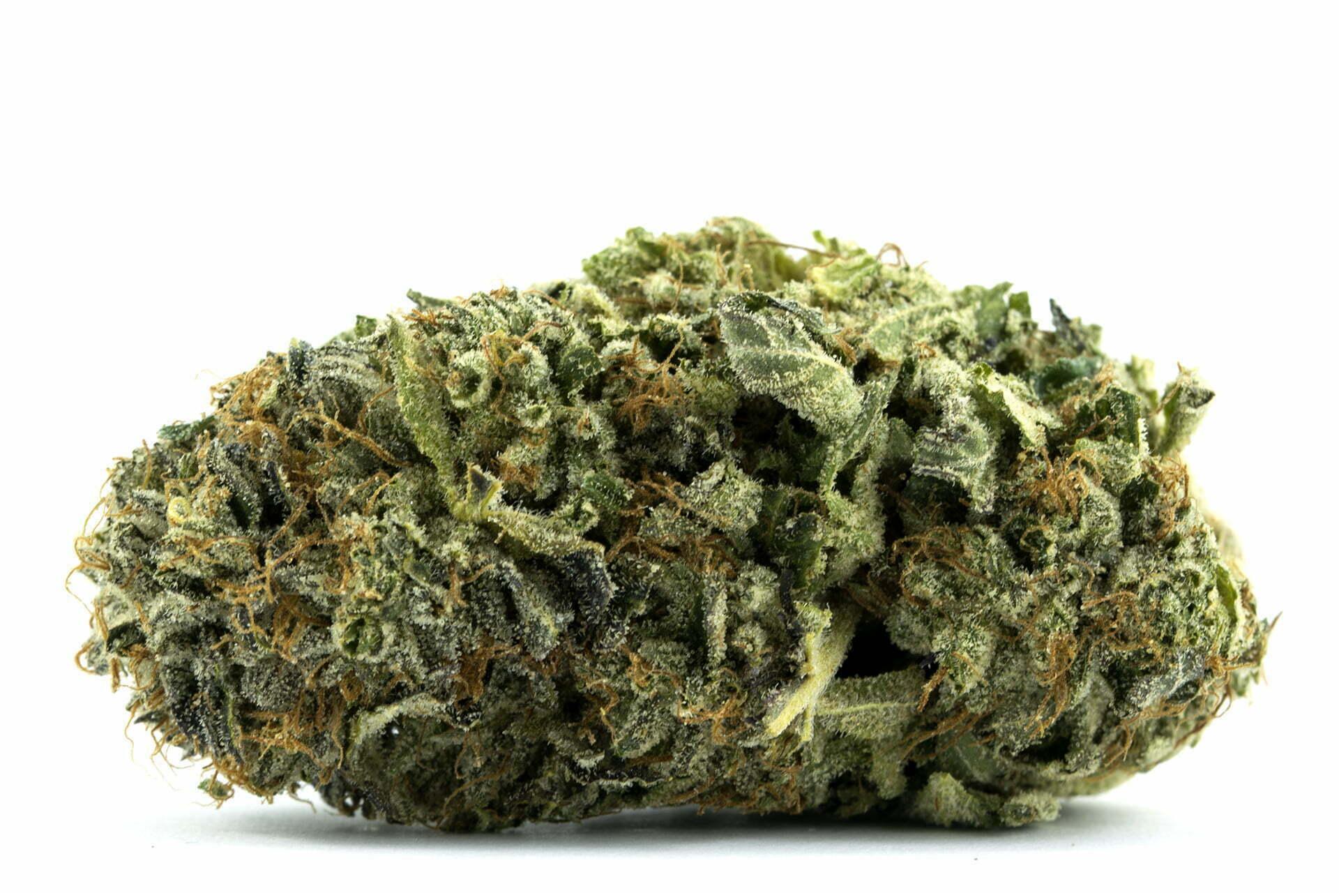 Pink Kush Strain Review - I Love Growing Marijuana