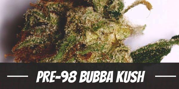 Pre-98 Bubba Kush Strain