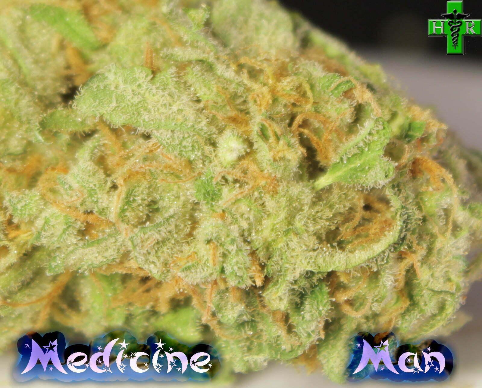 Medicine Man Strain Review - I Love Growing Marijuana