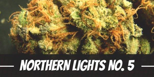 Northern Lights No. 5