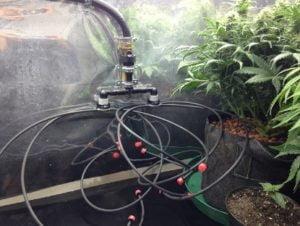 irrigation today