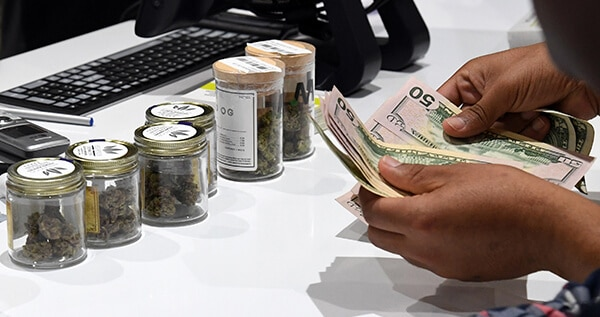How much money in dispensaries