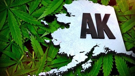 Alaska Collects Over $11 Million in Tax Revenue From Marijuana Cultivators