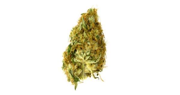 Gram of weed