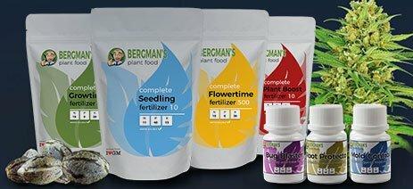 marijuana-grow-nutrients