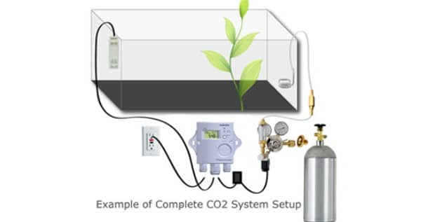 CO2 system setup. Over $1000,- investment