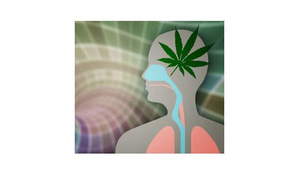 listen to your body when eating marijuana edibles