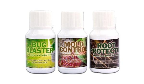 mold control cannabis