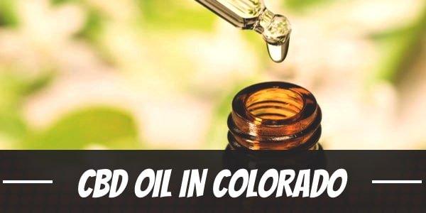 Your Guide to CBD Oil in Colorado