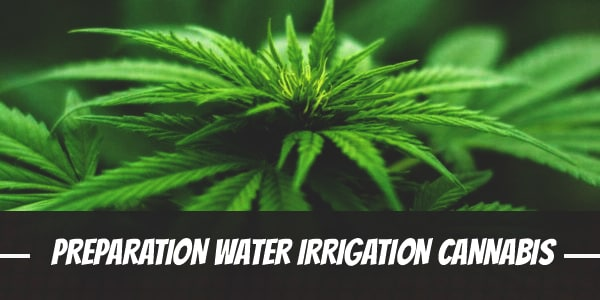 Preparation of Water for Irrigation of Cannabis