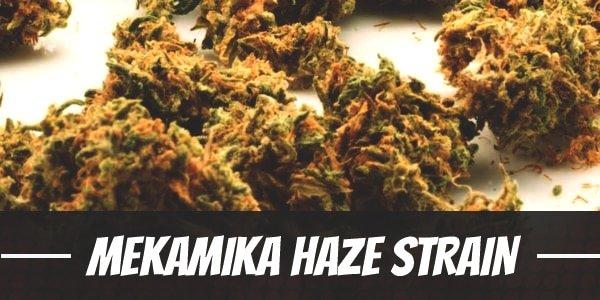 Mekamika Haze Strain