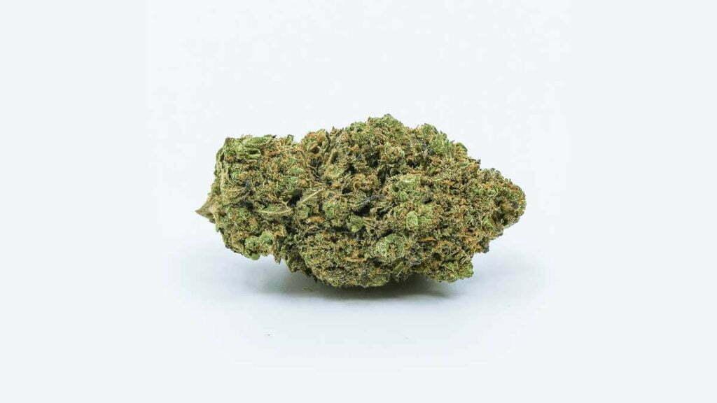 Shishkaberry Strain Review - I Love Growing Marijuana