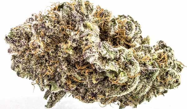 Purple People Eater Strain Effects