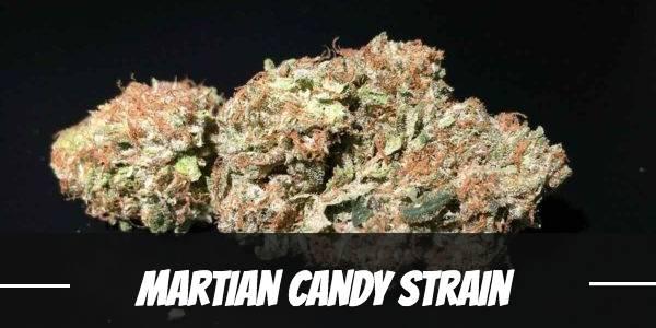 Martian Candy Strain