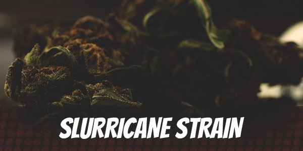 Slurricane Strain