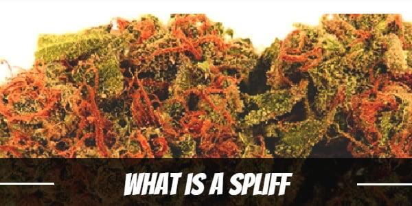 What is a Spliff