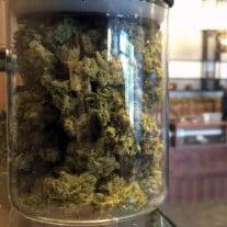 Marijuana bottle in a grow shop in California