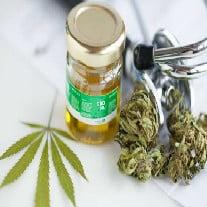 CBD in marijuana