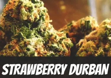 Strawberry Durban