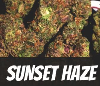 Sunset Haze Strain