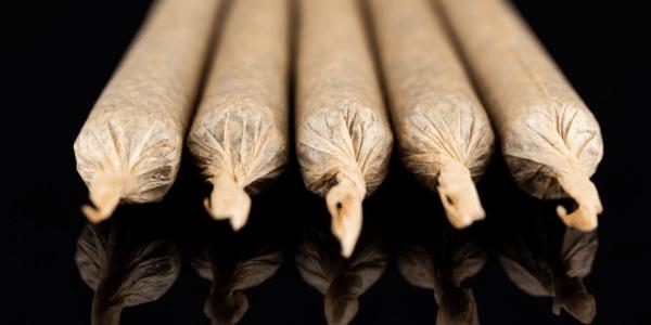 Types of Marijuana Joints