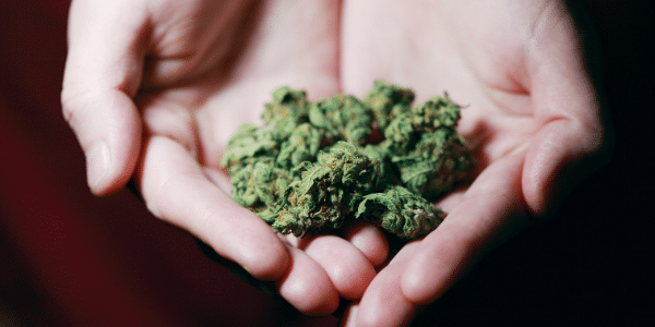 1-ounce-of-weed