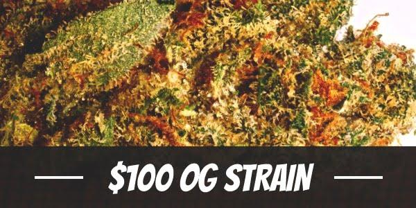 $100 OG Strain