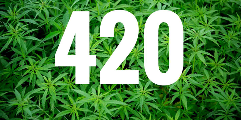 420 How Weed Day Got Its Famous Name
