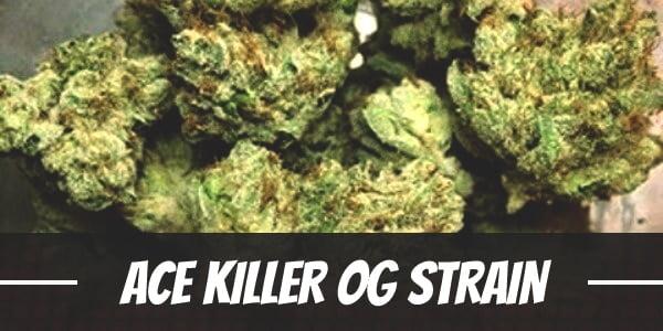 Ace Killer OG Strain