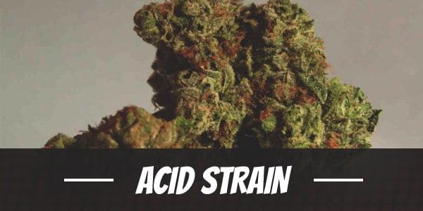 Acid Strain