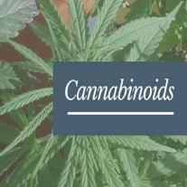 Active ingredients of medical marijuana